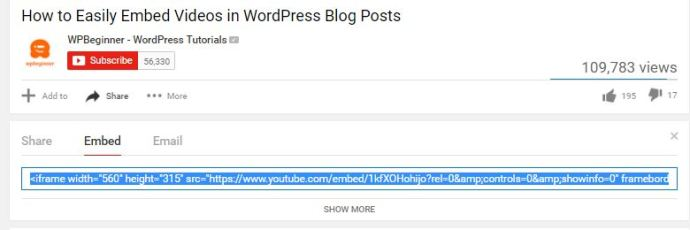 wordpress video4