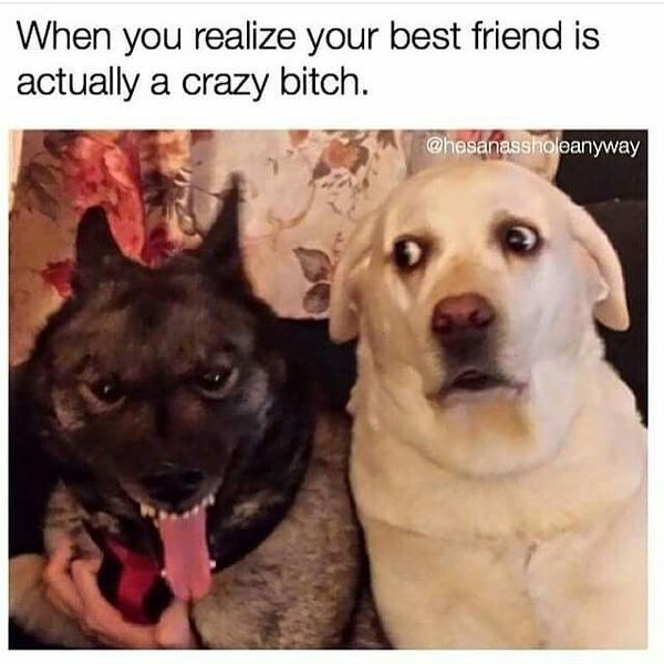 When you realize that your best friend is actually a crazy bitch