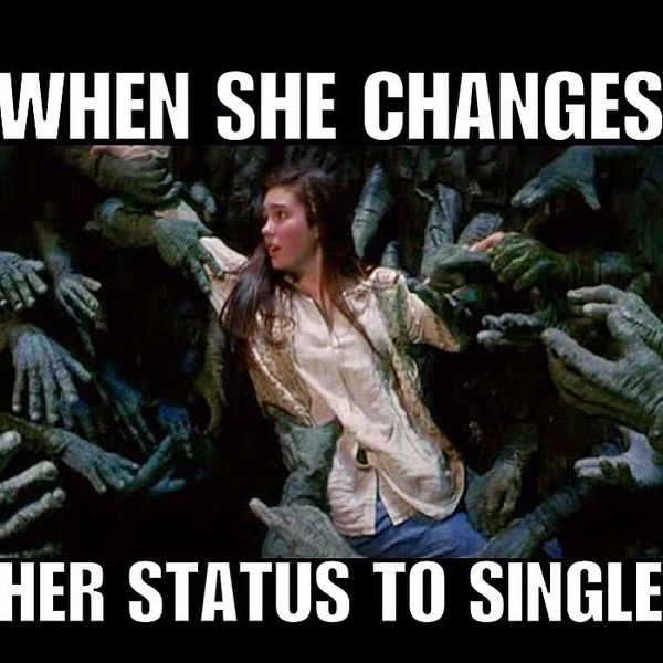 Great single memes