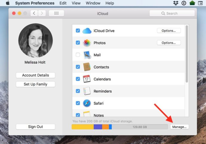 iCloud Preferences Manage Button