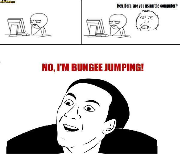 Hello Derp, are you using a computer?  No, I jump bungee!
