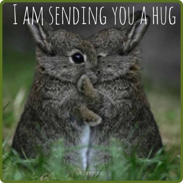 Smooth cute hug meme