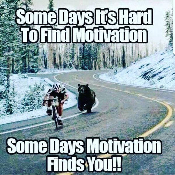 Motivational Memes Which Can Encourage Everybody