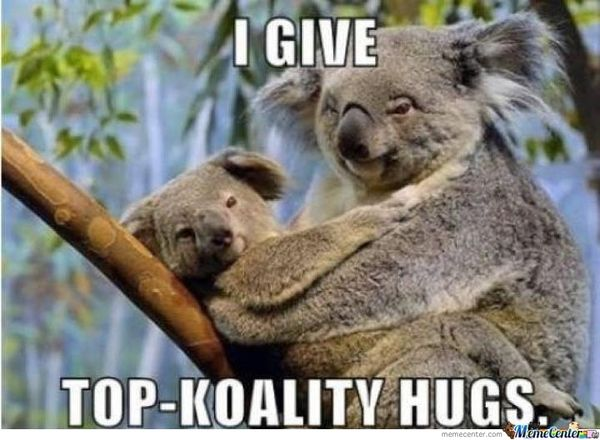 Incredibly funny images of hugs