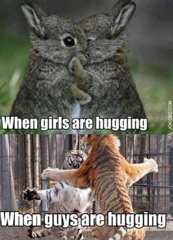 Cool meme hug
