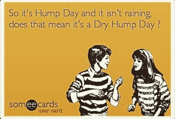 happy hump day meme and funny pictures
