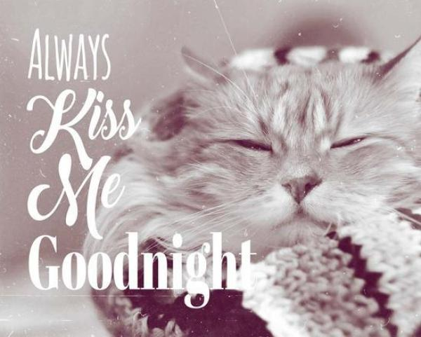 Sleepy Good Night Images for You