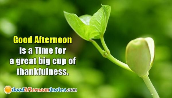 Motivating-and-Effective-Good-Afternoon-Images-with-Quotes 4