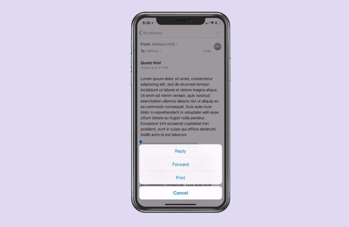 Pop-up Options Window on iPhone