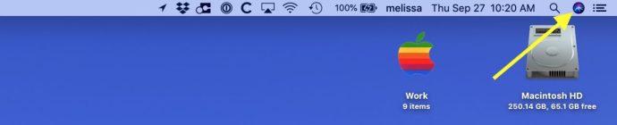 Access Siri in Menu Bar on the Mac