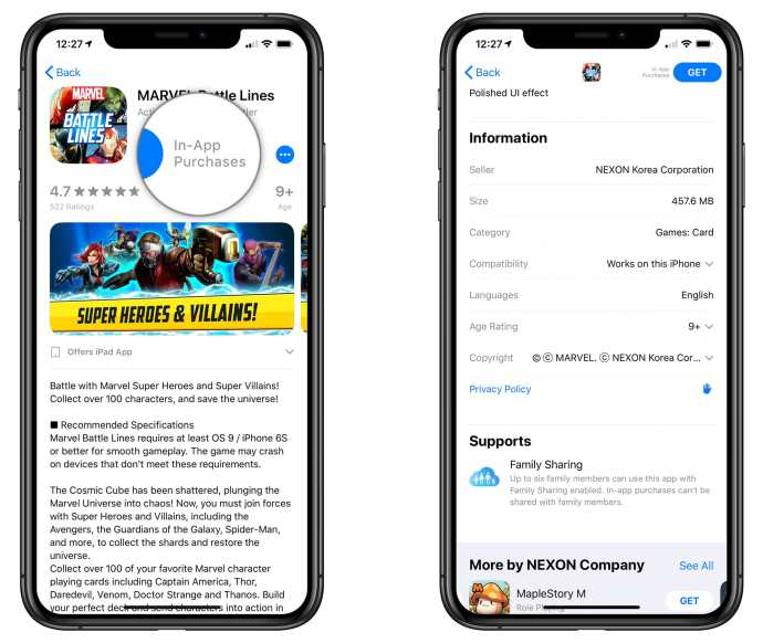 app store no in-app purchase information