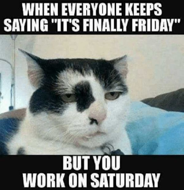 Best Saturday Work Quotes with Pictures
