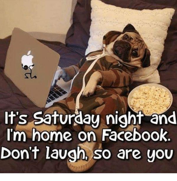 Fun Saturday night meme 4