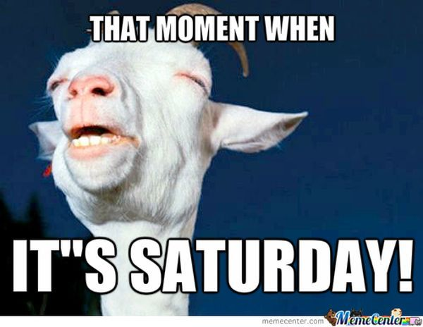 Its Saturday Meme 4