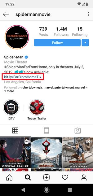 Bio Instagram example