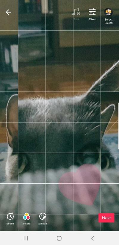 Tik Tok photo collage