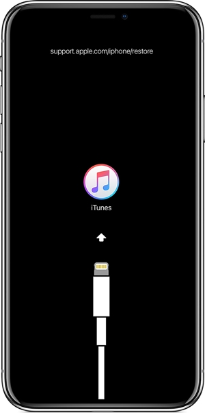 The iPhone screen is black - what to do?