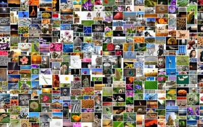 How to Make a Photo Collage With Music for Facebook