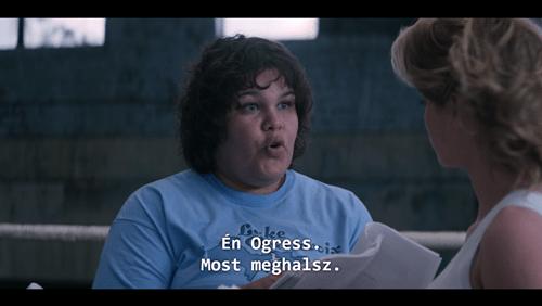 netflix custom subtitle