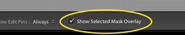 show selected mask overlay