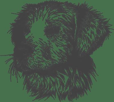 zeichne einen Hund