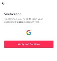 verify and continue