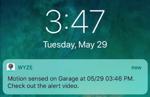 wyze cam notifications