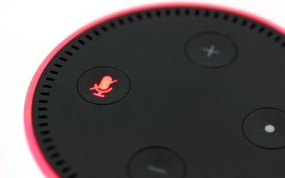 How to Make an Echo Dot Stop Flashing Green