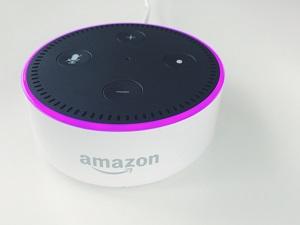 make echo dot portable