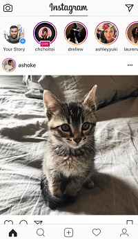 the Instagram Stories Order Determined