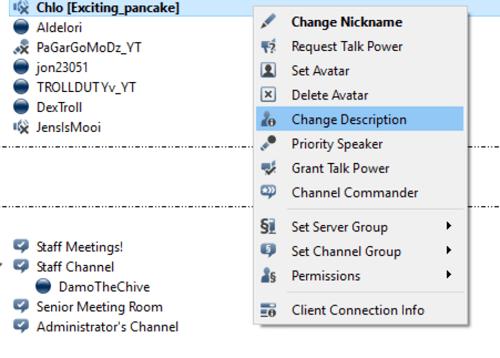 change description