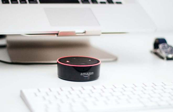 what to do if echo dot gets wet
