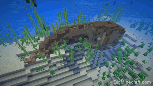 Buried Treasure in Minecraft