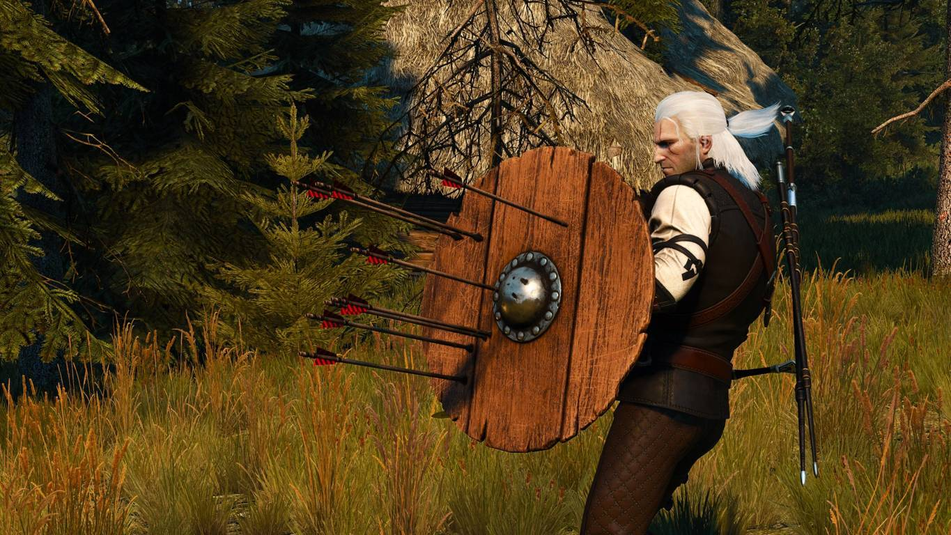 Witcher 3 Mods Installieren
