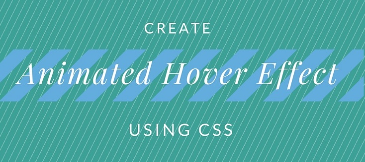 animated hover effect using css