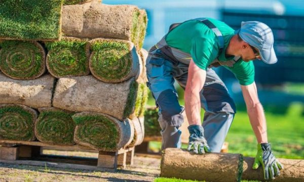 7 key tips successful landscaping