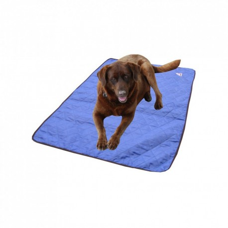 tapis rafraichissant pour chien hyperkewl