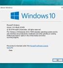 Find Windows 10 version