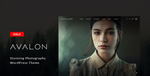 Top 10 WordPress Portfolio Themes 2017- 3