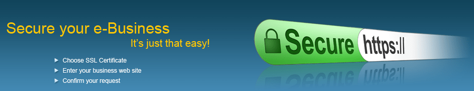Secure Business Website with SSL HTTPS - Technig