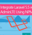 AdminLTE Plus Laravel 5 Integration with NPM