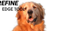 Using Refine edge tool - Technig