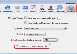 Mac OS X: Enable Web Inspector In Safari
