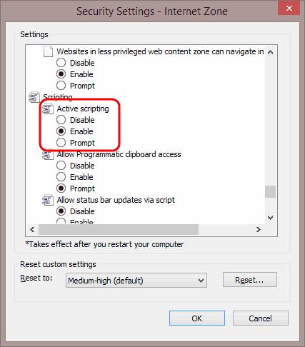 IE11 Javascript setting