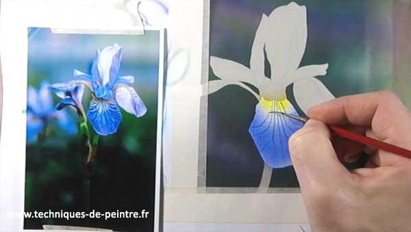 peindre-fleur-iris-acrylique-techniques-de-peintre