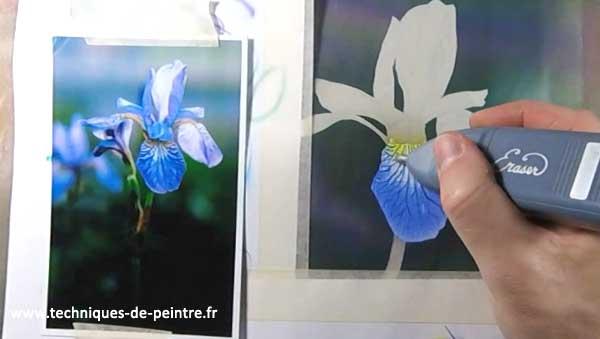 peindre-fleur-iris-gomme-electrique-techniques-de-peintre