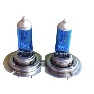 H7 Xenon Look Lampen