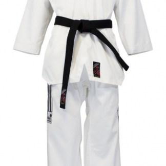 Taekwon-Do - Kampfsport