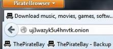 PirateBrowser: Avoid Government Censorship