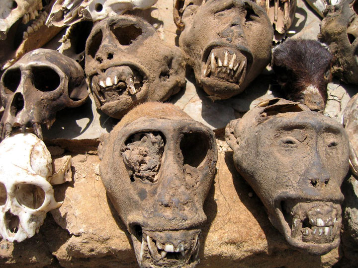Akodessewa Fetish Market in Togo-The 10 Most Scary Places On The Earth-14